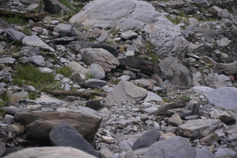 2014_0101-0105 萬山神石、萬山岩雕順訪萬頭蘭山_0897