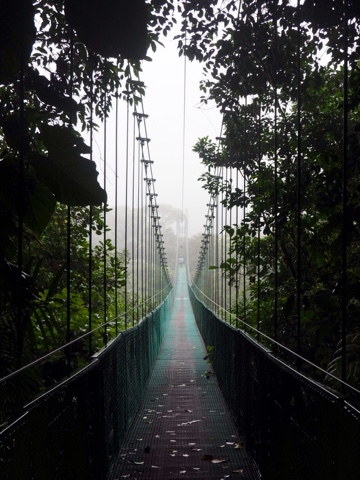 Hanging bridges in the cloud forest canopy of Monteverde, Costa Rica