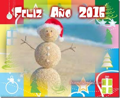 navidad tropical 2016 8