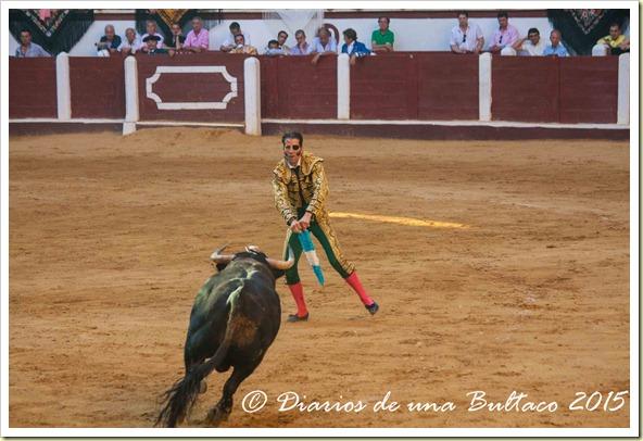 Toros Feria 2015-9974