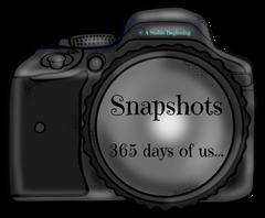 Snapshots 365