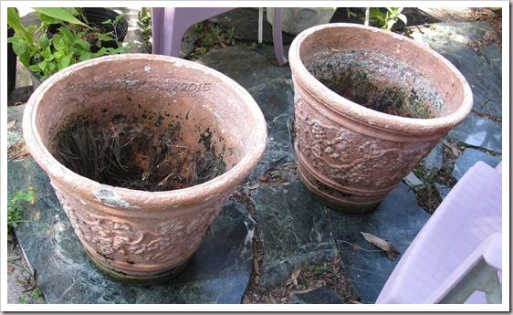 07-09-found-flowerpots