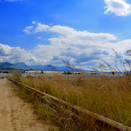Roadtrip by Danette de Klerk - Landscapes Travel ( sky, roadside, blue sky, road trip, daylight )