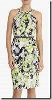 Coast Lola Print Dress