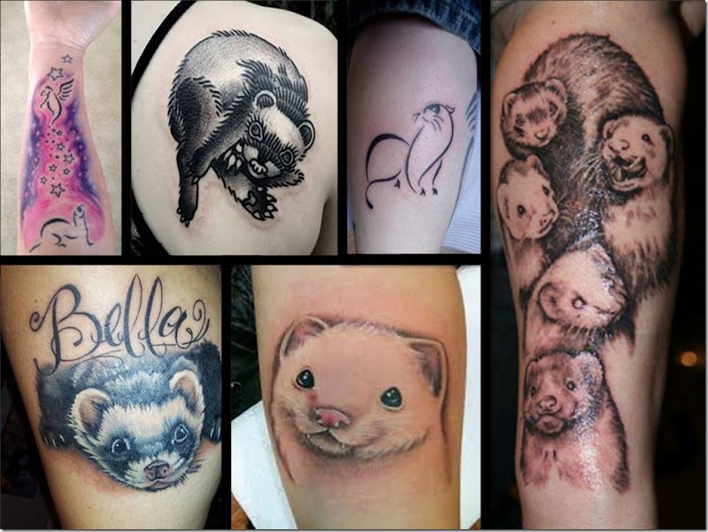 ferret_tattoos