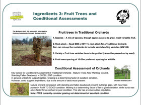 Recipe for Protecting Surrey's Traditional Orchards - PDF