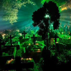 Divine by Rajkumar Bose - Travel Locations Landmarks ( lights, back-light, kolkata, cemetery, night-light, all-souls' day, canon eos 5d mark iii, night, india, travel, rays, cross,  )