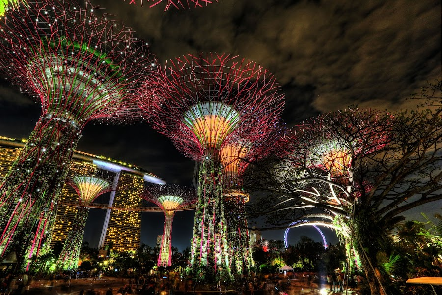 Gardens By The Bay/Marina Bay Sands, Singapore by Steven Yeoh - Buildings & Architecture Other Exteriors