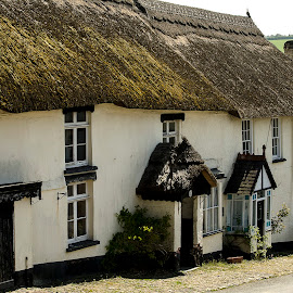 Village Square by Allan Benson - Buildings & Architecture Homes ( thatched, england, village, cottage, rural )