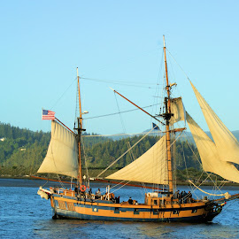 Sailing Ship on Coos Bay by Bill Gorman - Transportation Boats ( oregon, harbor, ship, north bend, boat, sailboat, coast, sailss, sailing, bay, rigging, coos bay, pirate )
