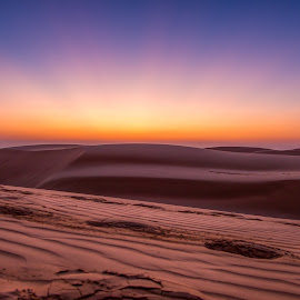 Desert sunrise by Andreja Novak - Landscapes Sunsets & Sunrises ( sand, dunes, desert, sunrise, landscape,  )