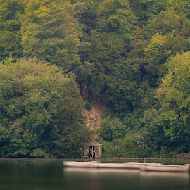 House by the lake by Bela Paszti - Landscapes Waterscapes ( water, west sussex, arundel, england, uk, forest, house, nikon, boat )
