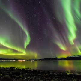 Aurora by Jens Andre Mehammer Birkeland - Landscapes Starscapes ( reflection, mountain, color, snow, aurora borealis, sea )