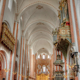 Inside Roskilde Cathedral~ by Karen McKenzie McAdoo - Buildings & Architecture Places of Worship