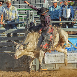 Makin' the Ride by Twin Wranglers Baker - Sports & Fitness Rodeo/Bull Riding