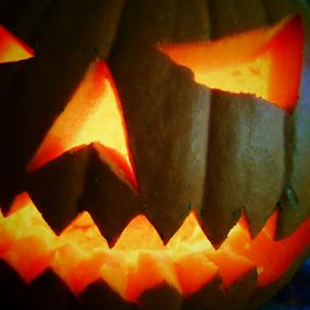 The Grim Pumpkin by Liz Pascal - Public Holidays Halloween