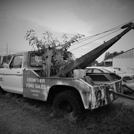 Ford Sales B&W by Kathryn Berry - Transportation Other