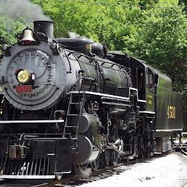 4501 by Brian Baggett - Transportation Trains (  )