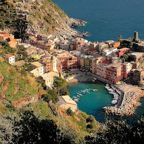 5Terre -Little harbor of Vernazza by Gérard CHATENET - City,  Street & Park  Vistas