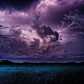 Everglades Thunder by Troy Wheatley - Landscapes Weather ( clouds, lightning, everglades, night, storm )