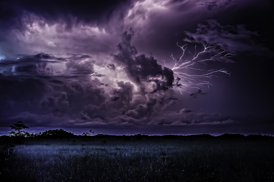 Everglades Thunder by Troy Wheatley - Landscapes Weather ( clouds, lightning, everglades, night, storm, #GARYFONGDRAMATICLIGHT, #WTFBOBDAVIS,  )