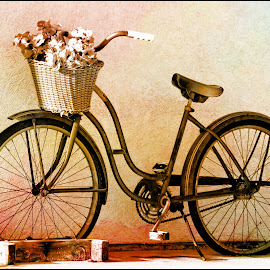 Mobile Basket of Flowers by Tricia Scott - Transportation Bicycles ( bike, nature, wheels, flowers, flower, bicycle )