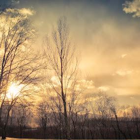 Sky Aglow by Michael Mounts - City,  Street & Park  Skylines