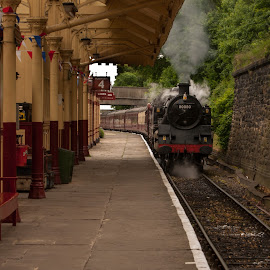 by Paul James - Transportation Trains ( canopy, benches, rails, station, train, steam,  )