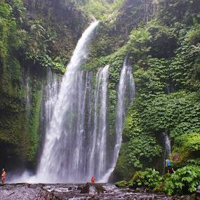 Tiu Kelep Waterfall by Mulawardi Sutanto - Landscapes Waterscapes ( indonesia, waterfall, lombok, travel, tiu kelep )