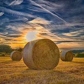 Sun-Dried ! by Marco Bertamé - Landscapes Prairies, Meadows & Fields ( clouds, field, painted, sky, blue, condensation trail, sunset, yellow, sun-dried, hay bale, sun,  )