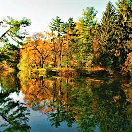 Pond Reflections by Paul S. DeGarmo - City,  Street & Park  City Parks ( park, colorful, pond, city )