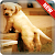 Dog Wallpapers file APK Free for PC, smart TV Download
