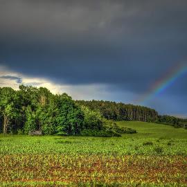 Over the rainbow by Marie Vachulková - Landscapes Prairies, Meadows & Fields ( rainbow )
