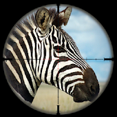 Game Zebra Safari Hunter - Wild Hunter 3D Simulation apk for kindle fire