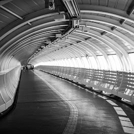 Tunnel by Max Cardoso - Buildings & Architecture Other Interior ( metro, tunnel )