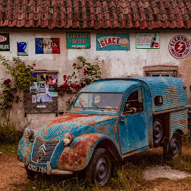 Where time stood still by Roger Carlsson - Transportation Automobiles ( gas pump, decay, blue green, scrapbook, cars, rust, lemon, signs, car, gotland, wall, petrol pump, roses )