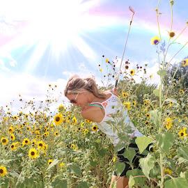 Sunflower Golf by Kathy Suttles - Digital Art People