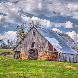 Farm in Clyde, AR by Jay Stout - Buildings & Architecture Other Exteriors
