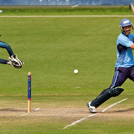 by Francois Loubser - Sports & Fitness Cricket