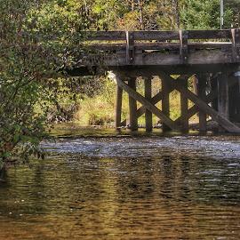 AuSable river Steckert Bridge by Patti Pappas - Buildings & Architecture Bridges & Suspended Structures ( water, autumn, bridge, river )