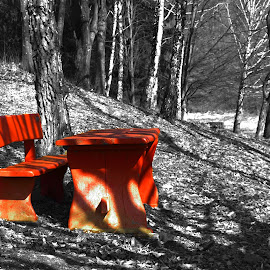 red one by Miroslav Bičanić - City,  Street & Park  City Parks ( cool, red one, park, red bench, rest )