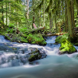 Panther Creek Impressions III by Michael Otter - Landscapes Waterscapes