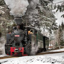 Bucovina by Pascal Hubert - Transportation Trains