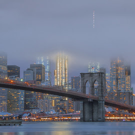 Night Time Skyline by Carol Ward - City,  Street & Park  Skylines ( brooklyn bridge, dumbo, nyc, bridges, brooklyn )