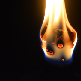 Burned Out by Alexandra Nimmons - Novices Only Objects & Still Life ( macro, torch, close up, fire, flame,  )
