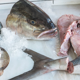 Fish on ice in the market by Deyan Georgiev - Food & Drink Meats & Cheeses ( raw, shop, supermarket, uncooked, store, fish, catch, ocean, frozen, dieting, cold, fresh, protein, ice, meat, cooking, industry, animal, selling, silver, sea, delicious, health, sale, market, seafood, food, background, salmon, healthy, freshness, fishing )