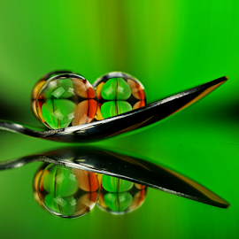 by Dipali S - Artistic Objects Other Objects ( abstract, orange, reflection, color, colorful, green, still life, art, artistic, spoon, spheres, refraction )