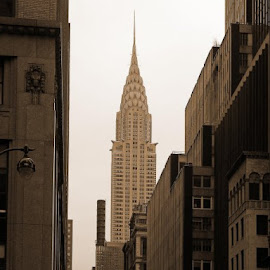 The chrysler building taken on new years eve 2005.If you ever get a chance to do New York @ Christmas....wow! by Ron Fothergill - Buildings & Architecture Statues & Monuments