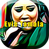 Download Android App Evie Tamala Hit Dangdut for Samsung