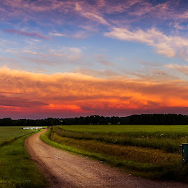 Sunset path  by Teddy Domagalski - Landscapes Prairies, Meadows & Fields